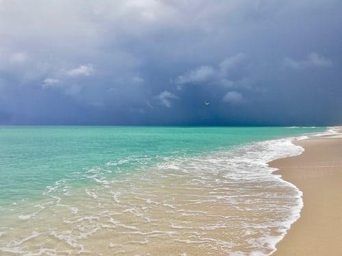 Florida's Beauty to Explore